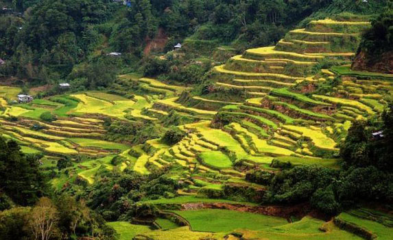 Banaue and Sagada Tour Packages