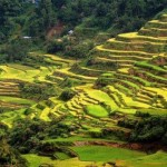 Banaue Tour Packages 2017